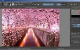 Обзор krita — бесплатного редактора для растровой графики
