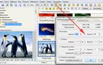 Faststone image viewer — обзор программы и её возможностей