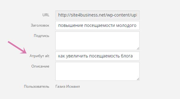 Как увеличить посещаемость сайта: основные этапы раскрутки сайта