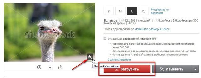 Подробная инструкция, как убрать водяной знак с фото