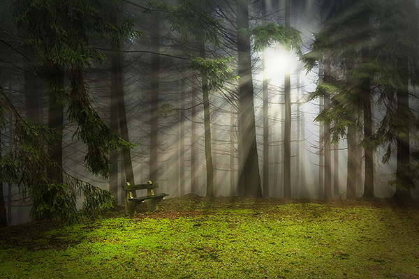 Как добавить лучи света на фотографии в adobe photoshop