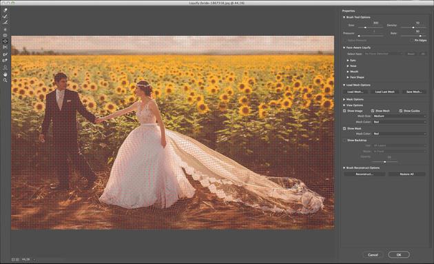 Как работать с фильтром «Пластика» в adobe photoshop